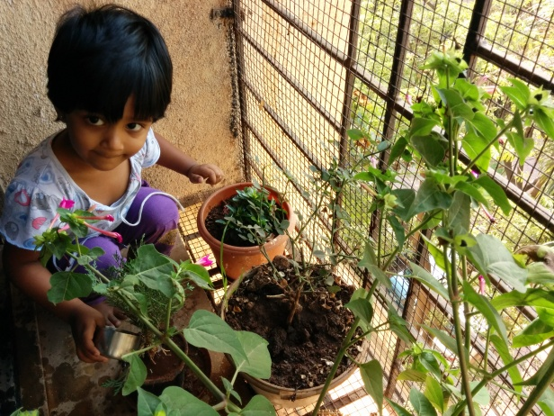 World Environment Day - watering plants